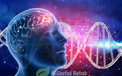 الدوبامين والادمان وراء توقف مركز المكافأة بمخ  الإنسان عن إفراز الدوبامين الطـبيعي