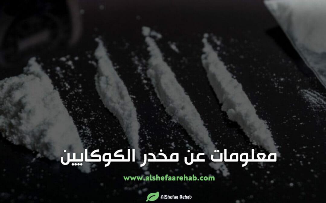 10 معلومات عن مخدر الكوكايين