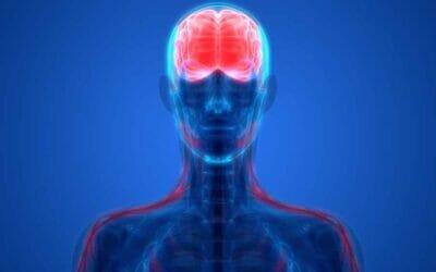 الهيروين وتاثيره على المخ والاعصاب