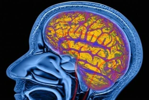 اثير الترامادول على المخ والاعصاب